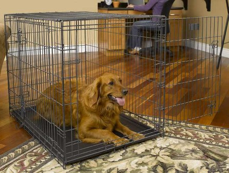 Plastic, Soft & Wire Dog Crates