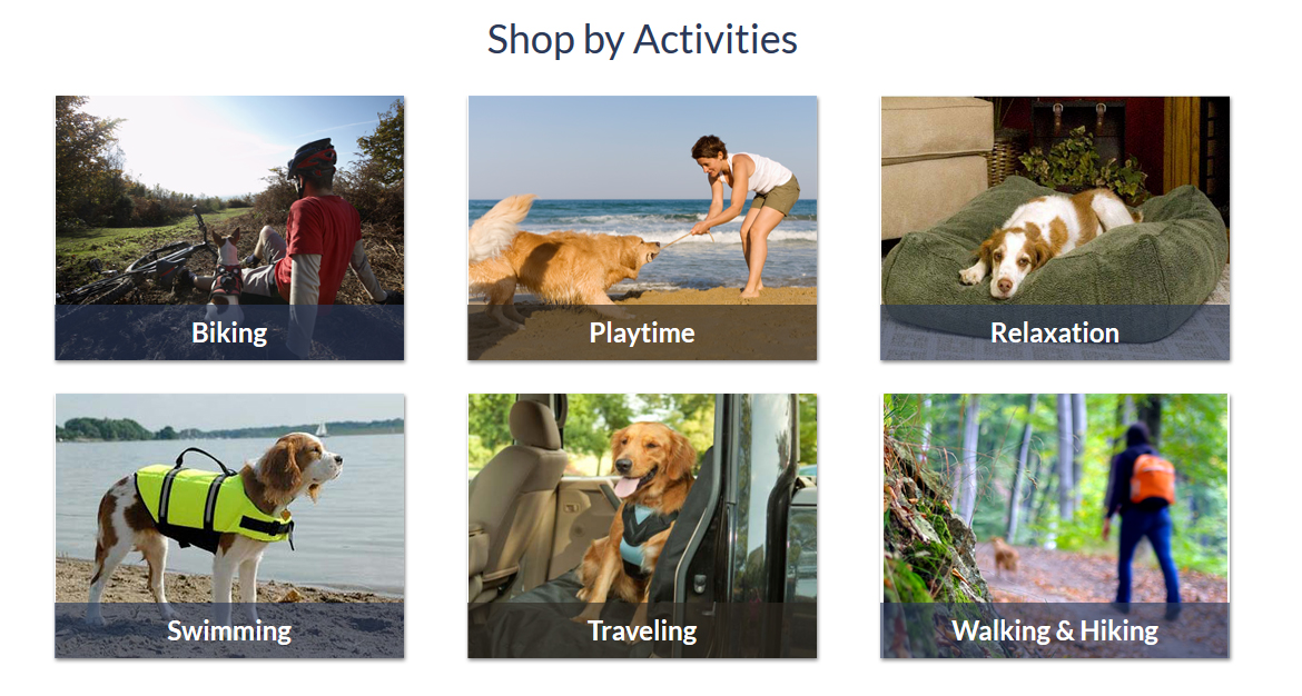 Traveling & Outdoor Activites for Dogs