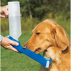 handi-drink-for-dogs