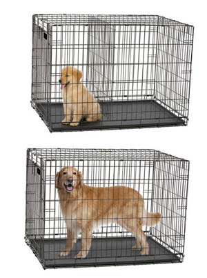 dog-crates-divider-panels