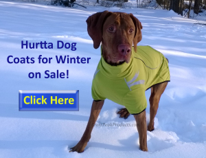 best-dog-coats-for-sale