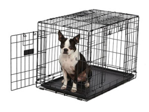 midwest-dog-crates-ovation-double-door