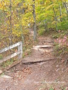 grand-canyon-of-pa-trails