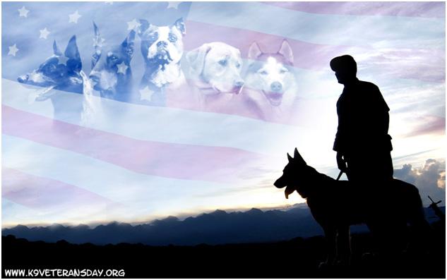 k9-veterans-day-dogs