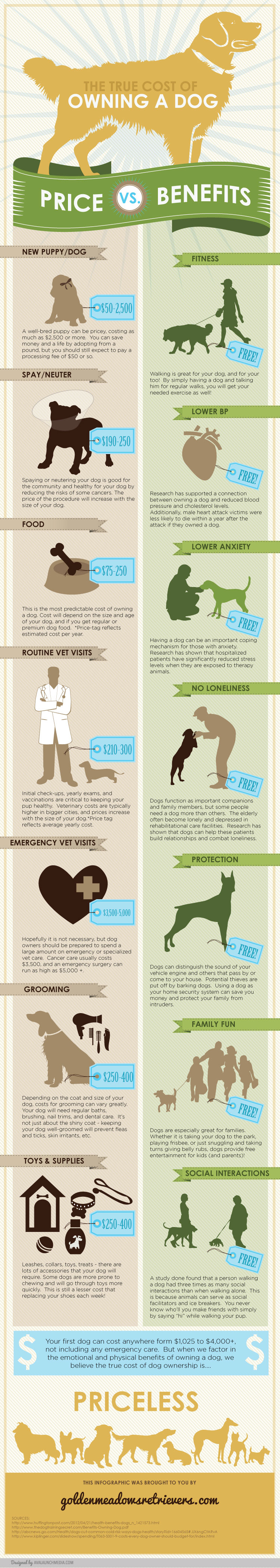 cost-of-owning-a-dog-price-vs-benefits