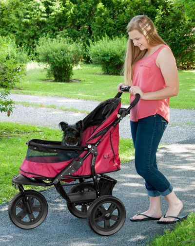 Consider a Pet Gear Stroller When Choosing Your New Pet Stroller