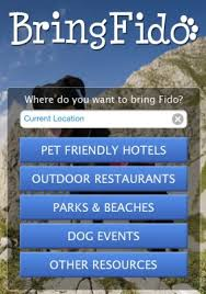 bring-fido-dog-travel
