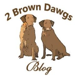 21 Best Dog Blogs You Need to Follow